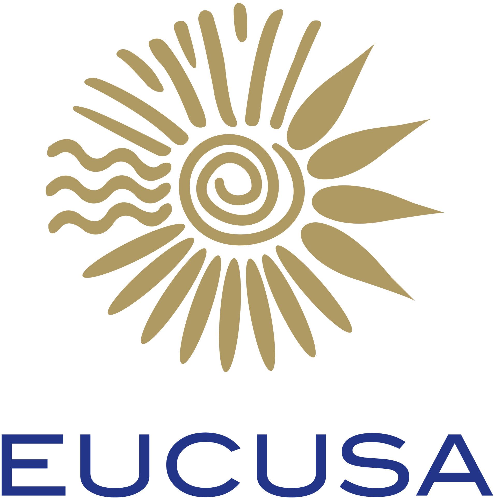 EUCUSA_Logo_big